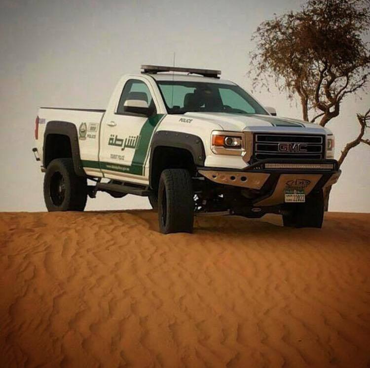 And You Taught That Dubai Police Fleet Is Only Super Cars