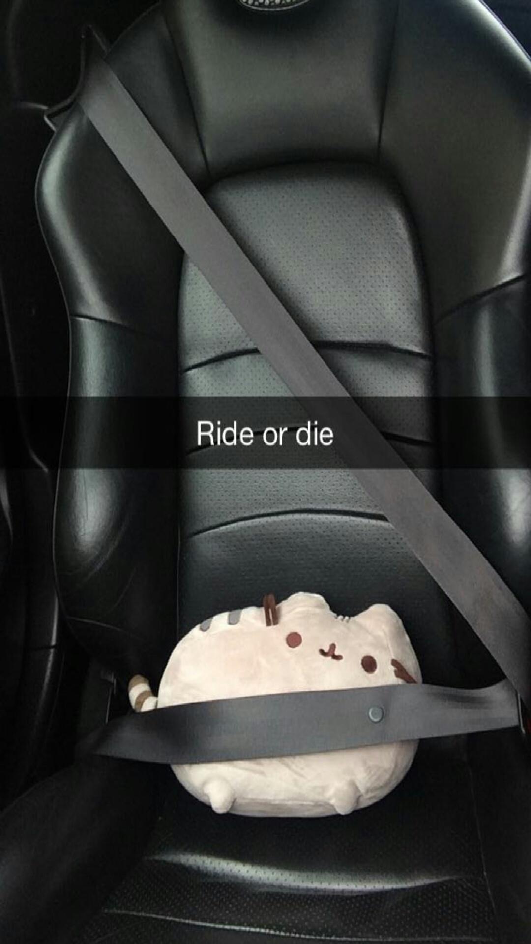 Image result for snapchat car