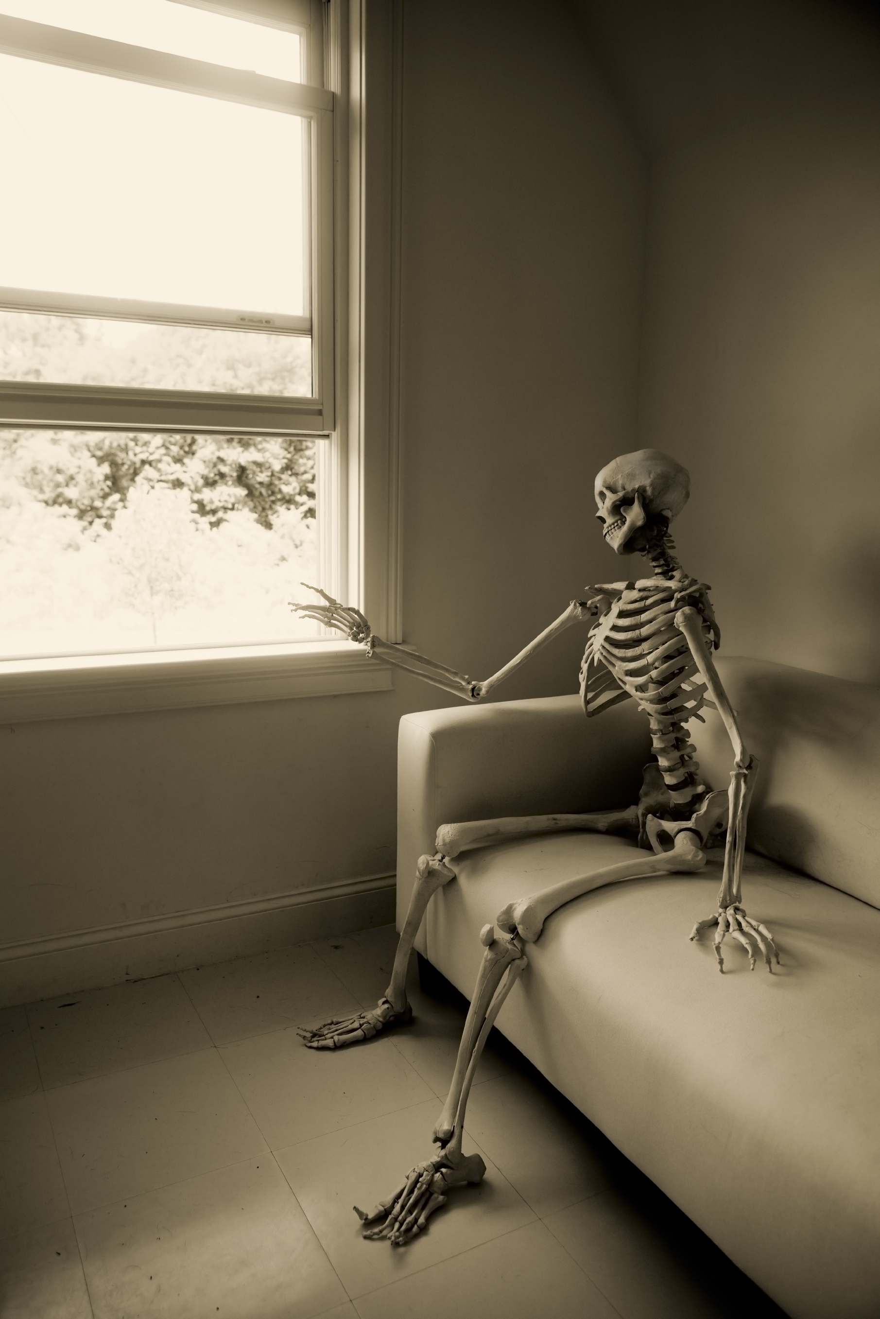 [Image: skeleton-waiting-543592bcbbc65.jpg]