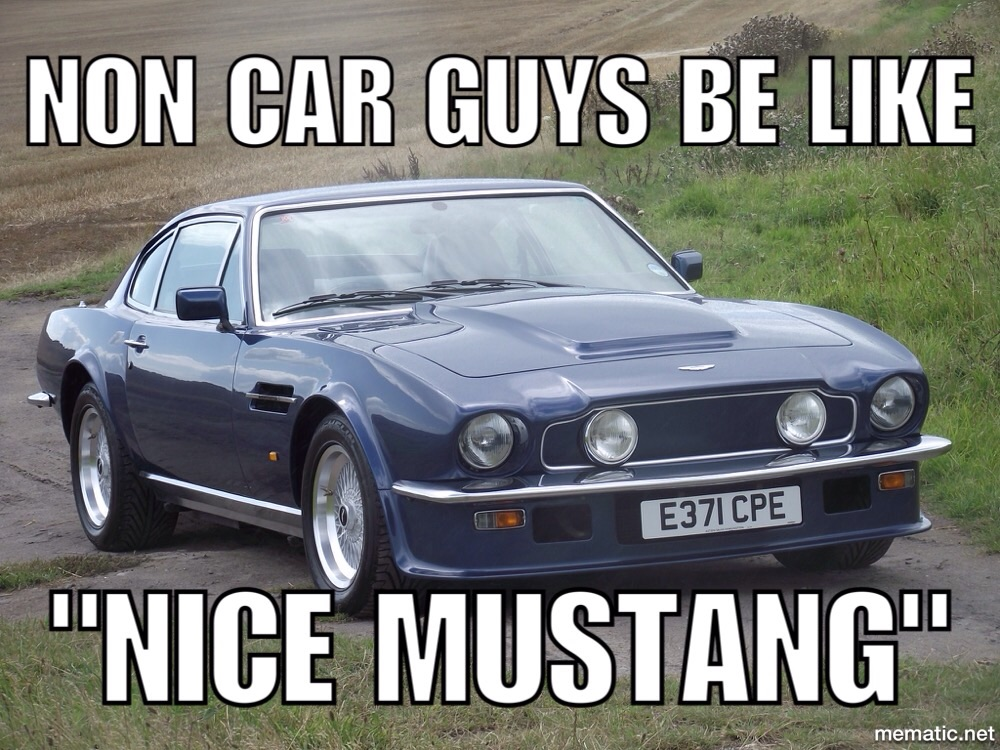 I Ve Heard Someone Call It A Mustang Before