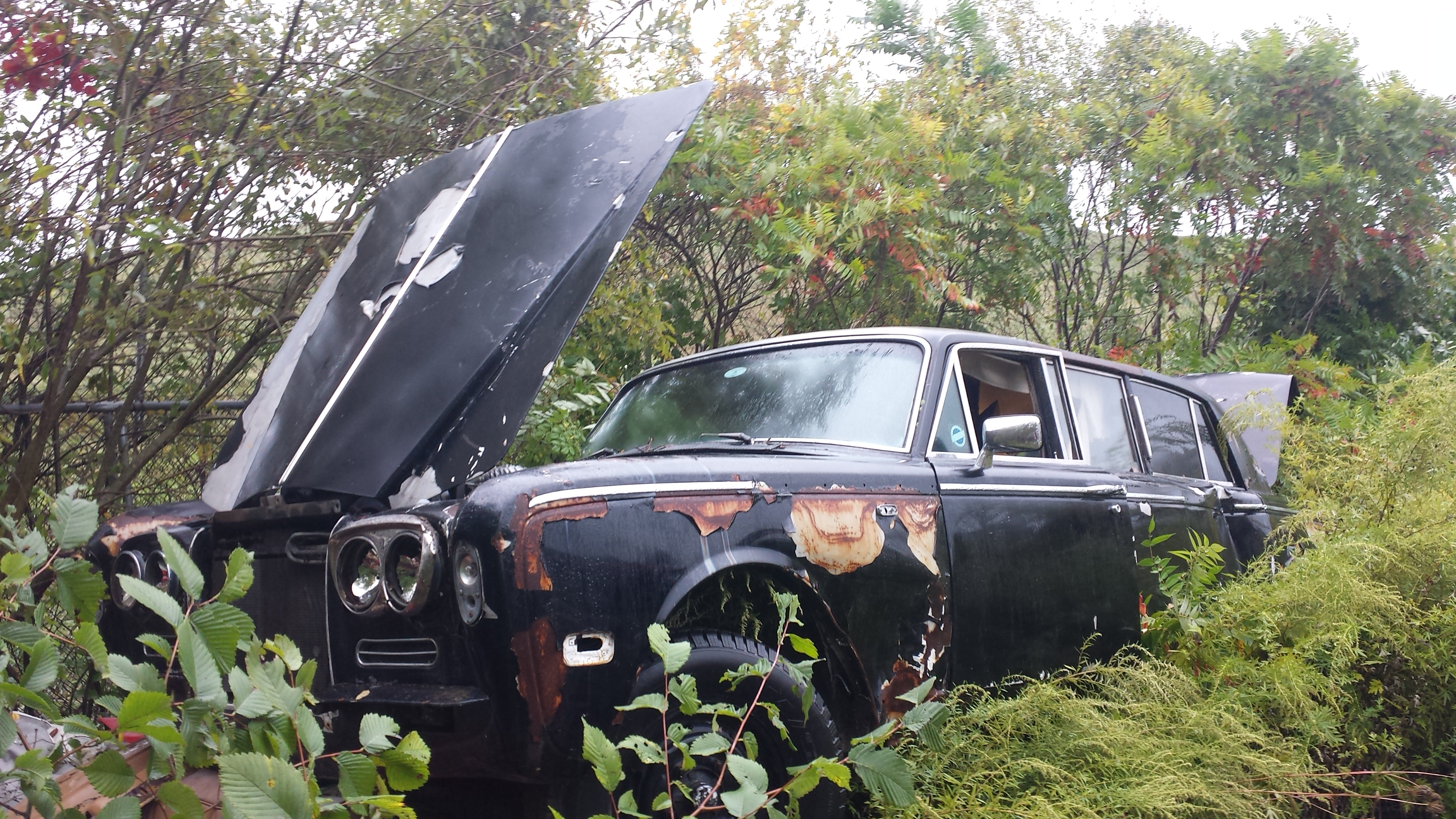 While poking around a couple of junk yards today, I didn\'t quite ...