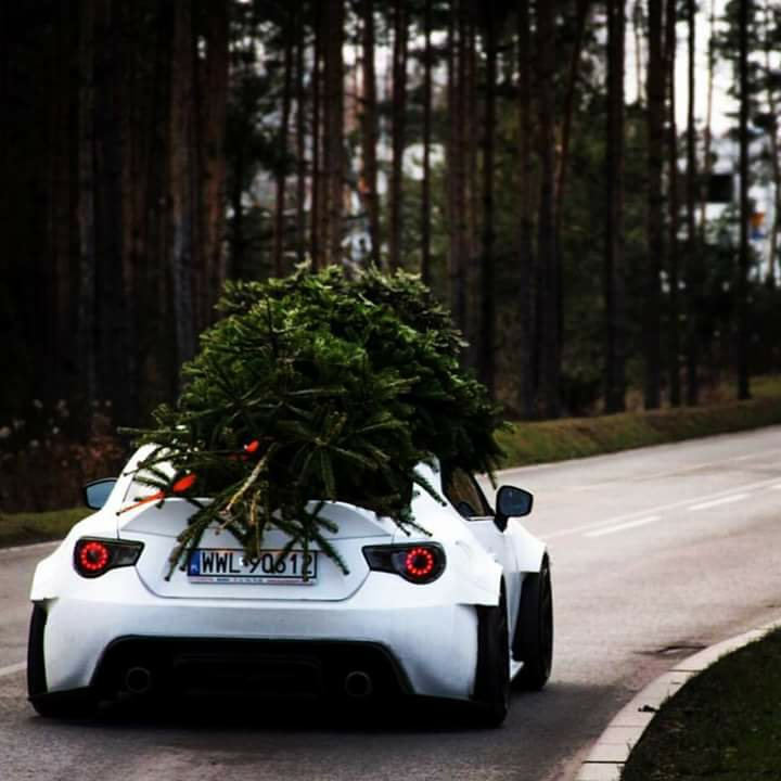 Christmas Sports Car.This Is How Car Guys Bring Christmas Tree Home