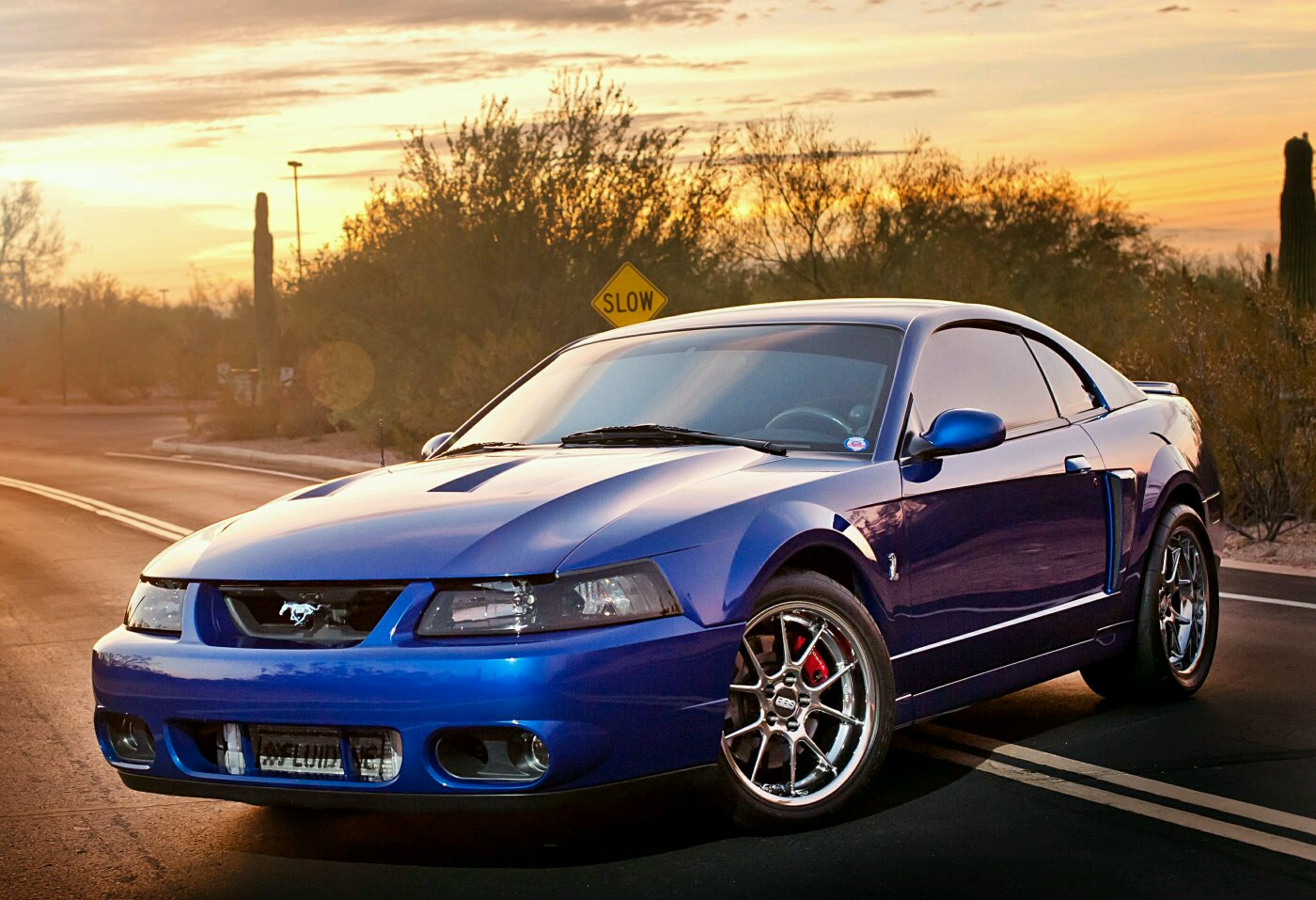 4th Gen Lovers Mustang Any 2003 Gt