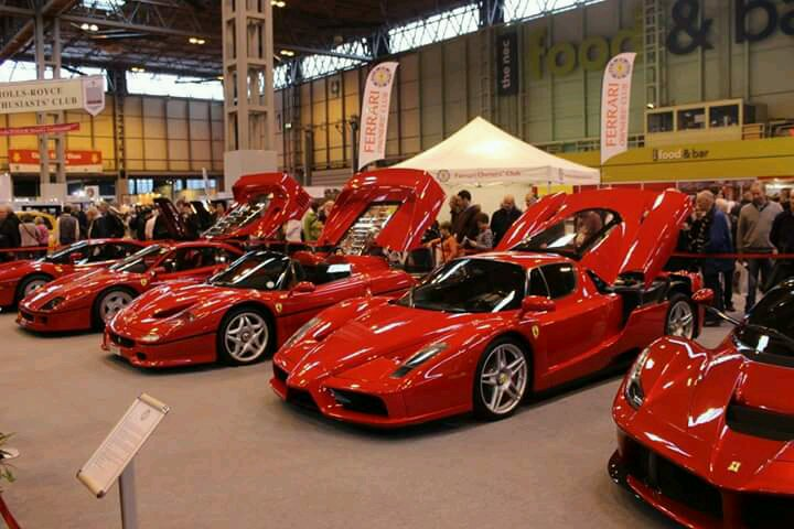 Best line up of cars ive ever seen in my life.