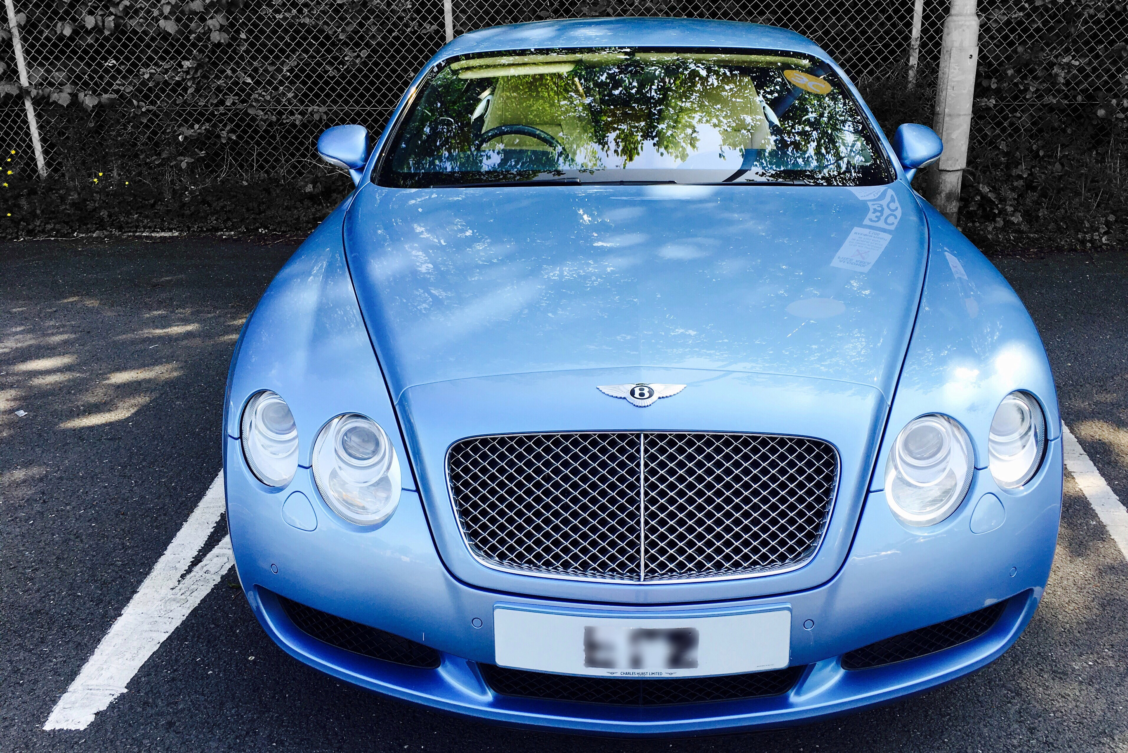 Bewitching Baby Blue Bentley