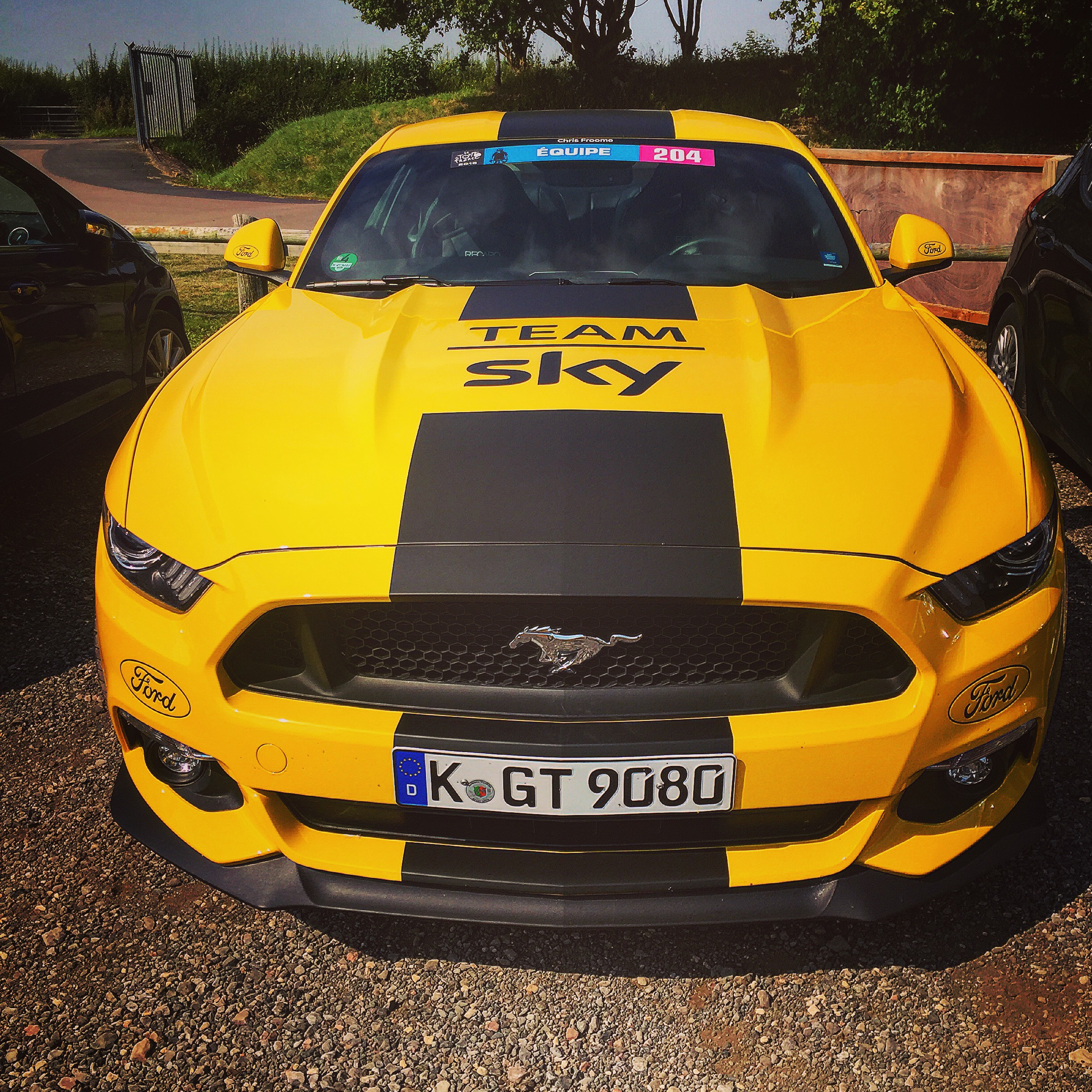 Team sky ford mustang
