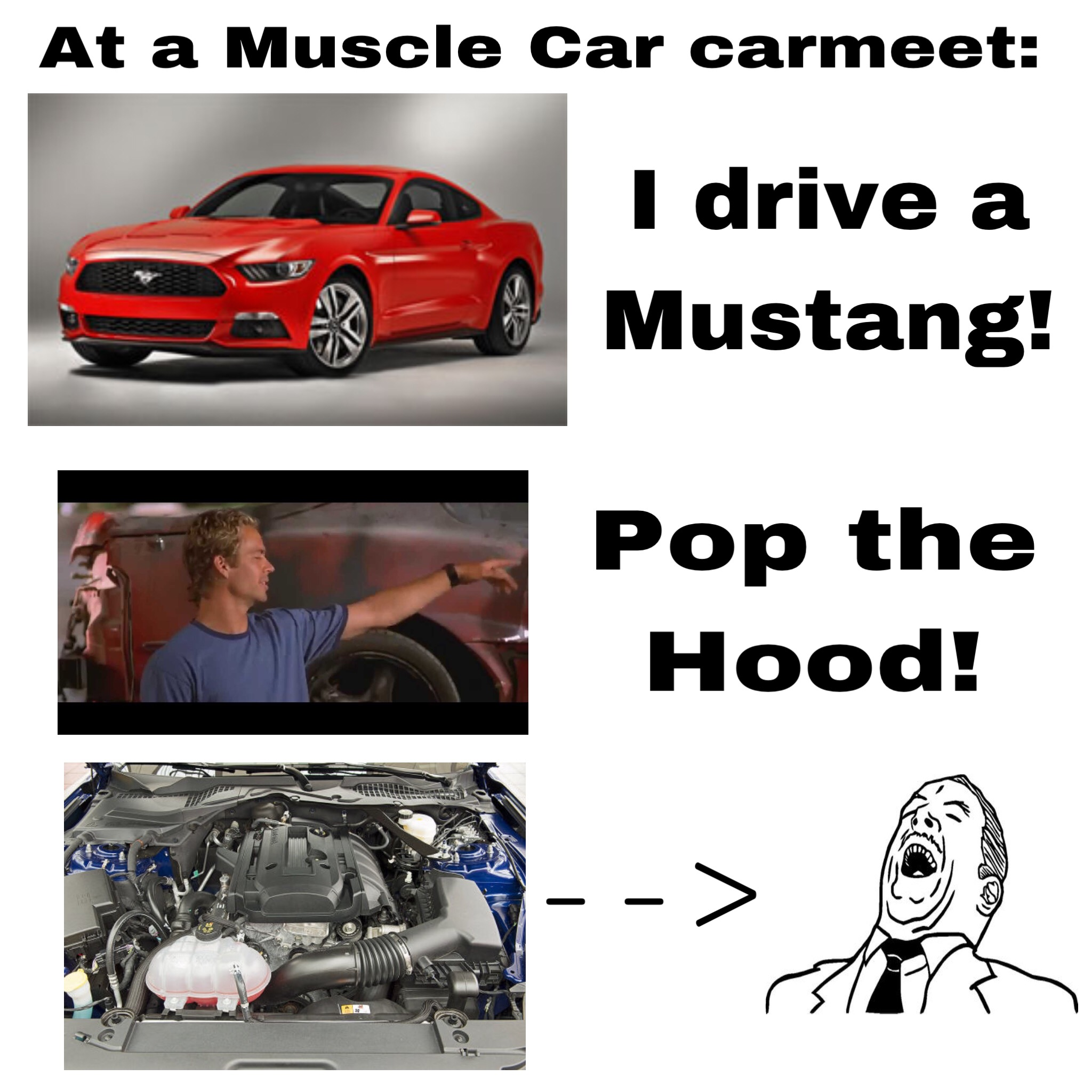 Sorry but i dont like the 4 cylinder mustang