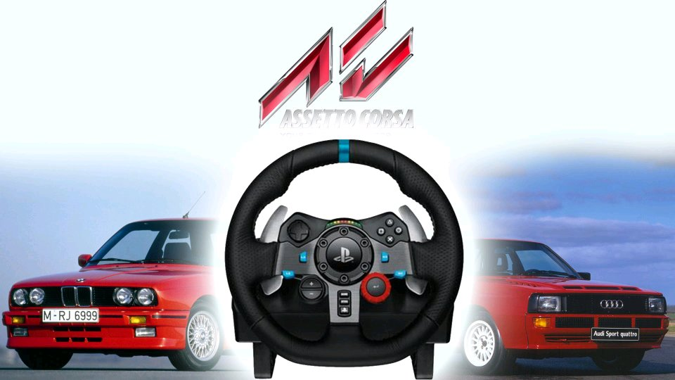 What are the most realistic settings for G29 to play Assetto Corsa