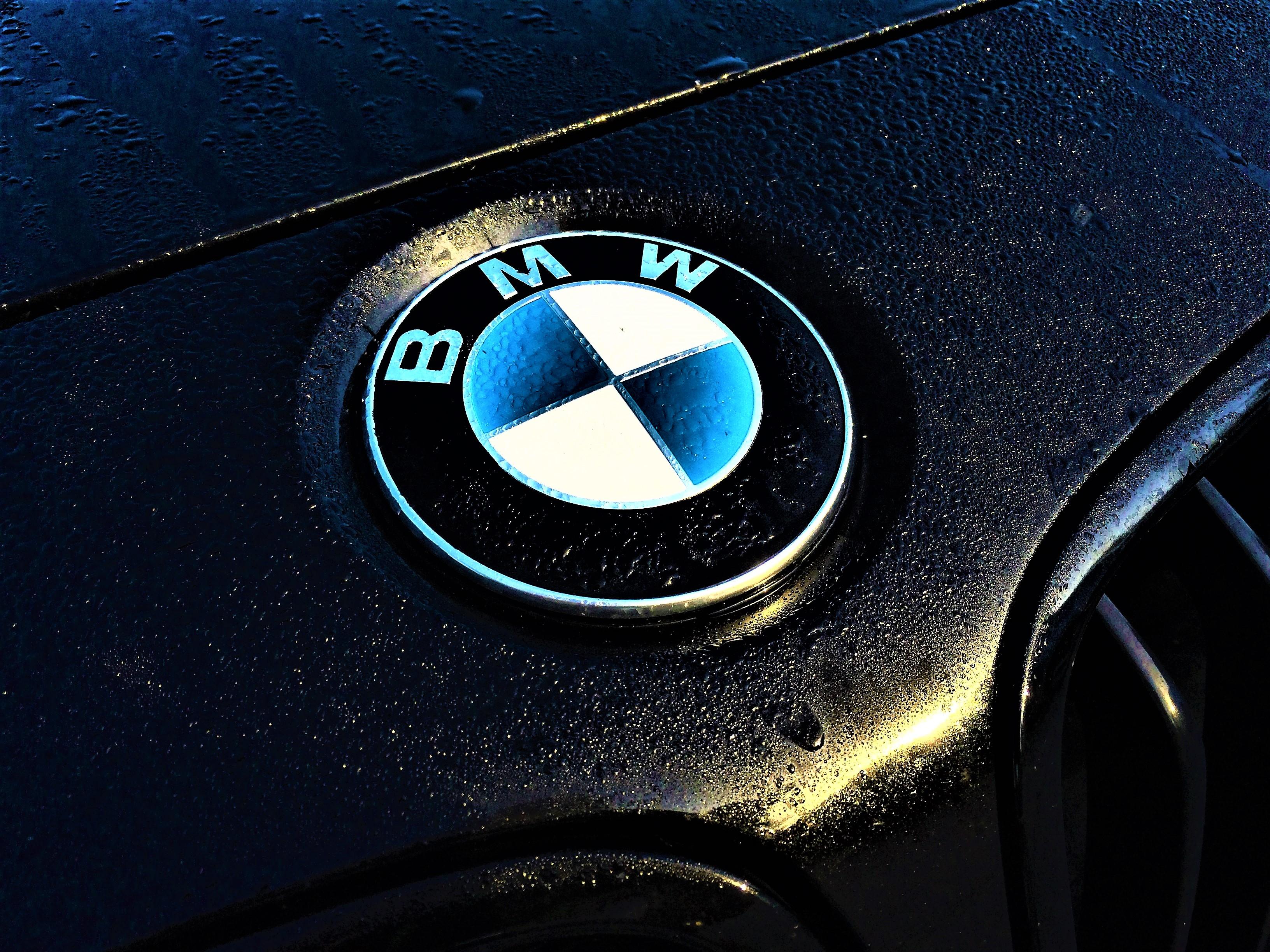 Bmw Logo Wallpaper 4k